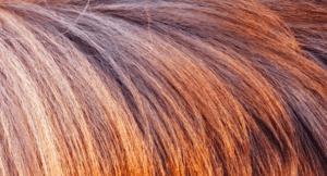 So wird dein Haar zum Hingucker